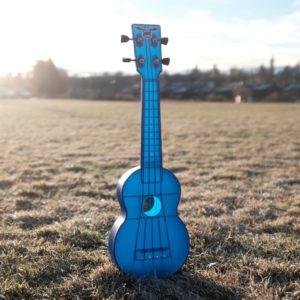 outdoor uke