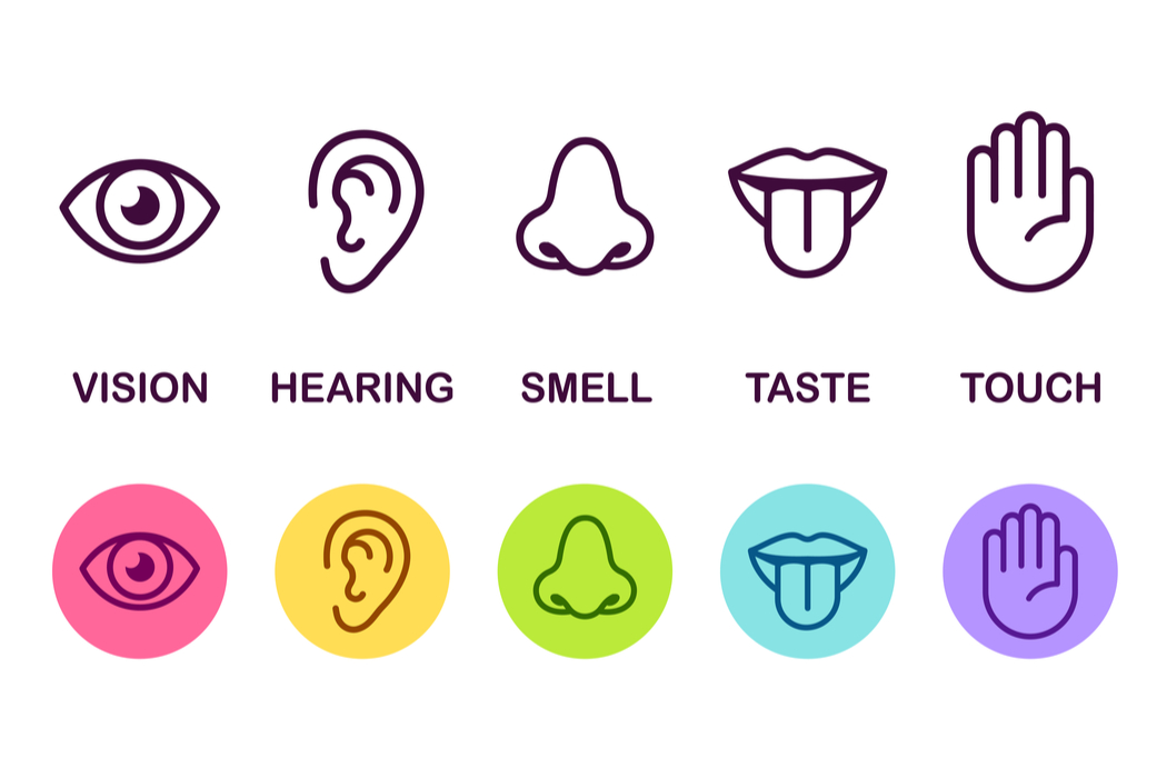 shutterstock five senses