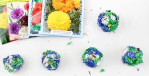 Seed Bombs Earth Day STEM Activity 2
