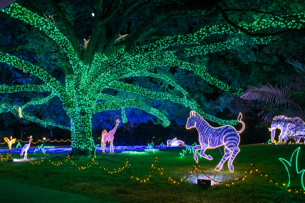 Zoo Lights 0042 1995