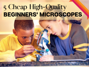 Microscopes featured
