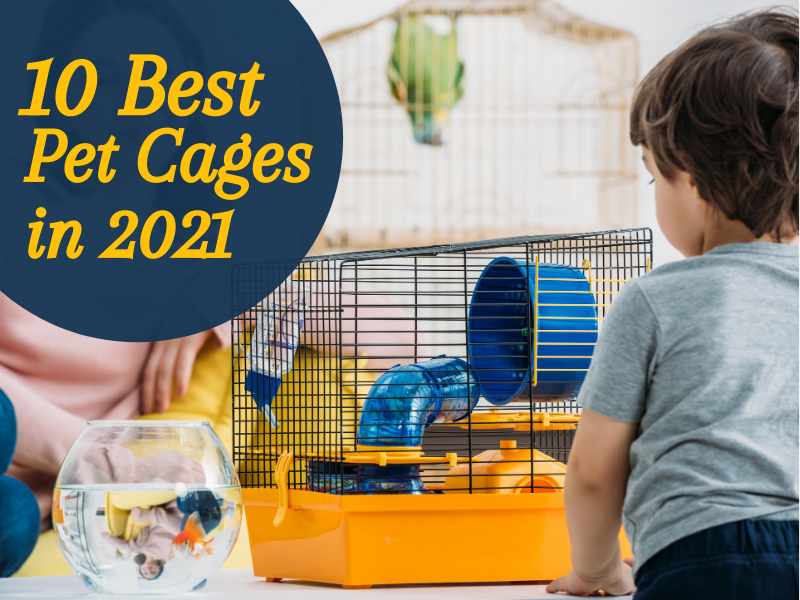 BKS-pet cage-featured