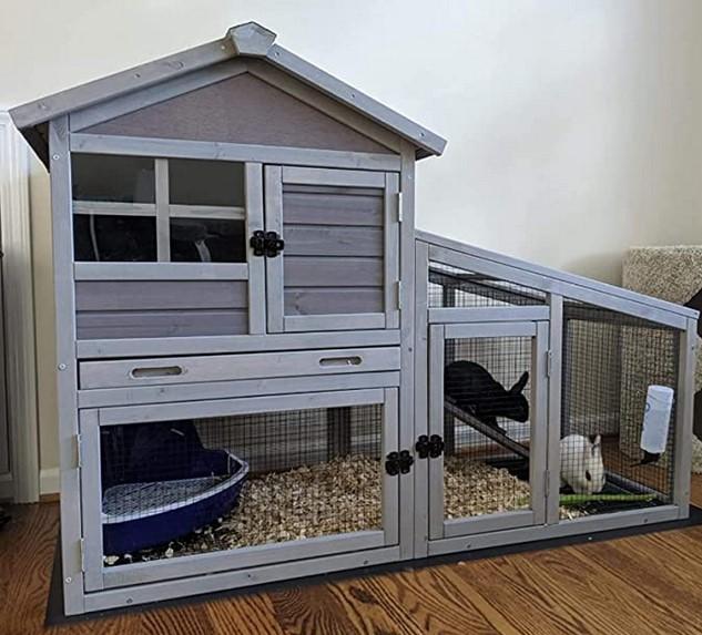 Pet Cage 3