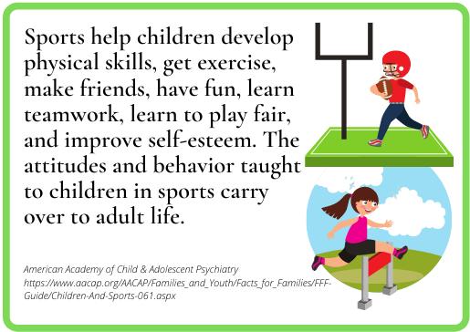 BKS-Sports Toys -fact