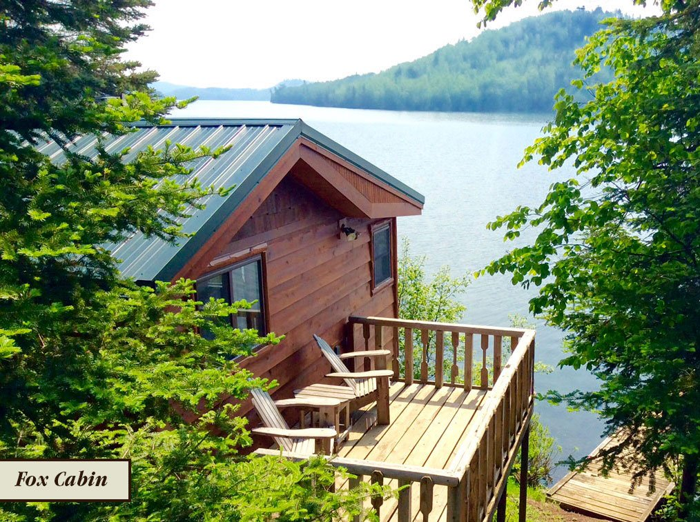 Best Family-Friendly Campgrounds in Each State 23