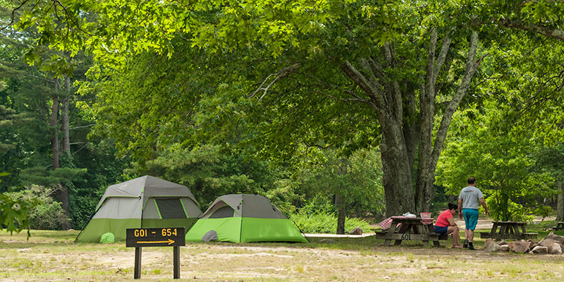 Best Family-Friendly Campgrounds in Each State 39